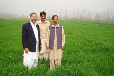 Charsadda farmers enjoy bumber crop